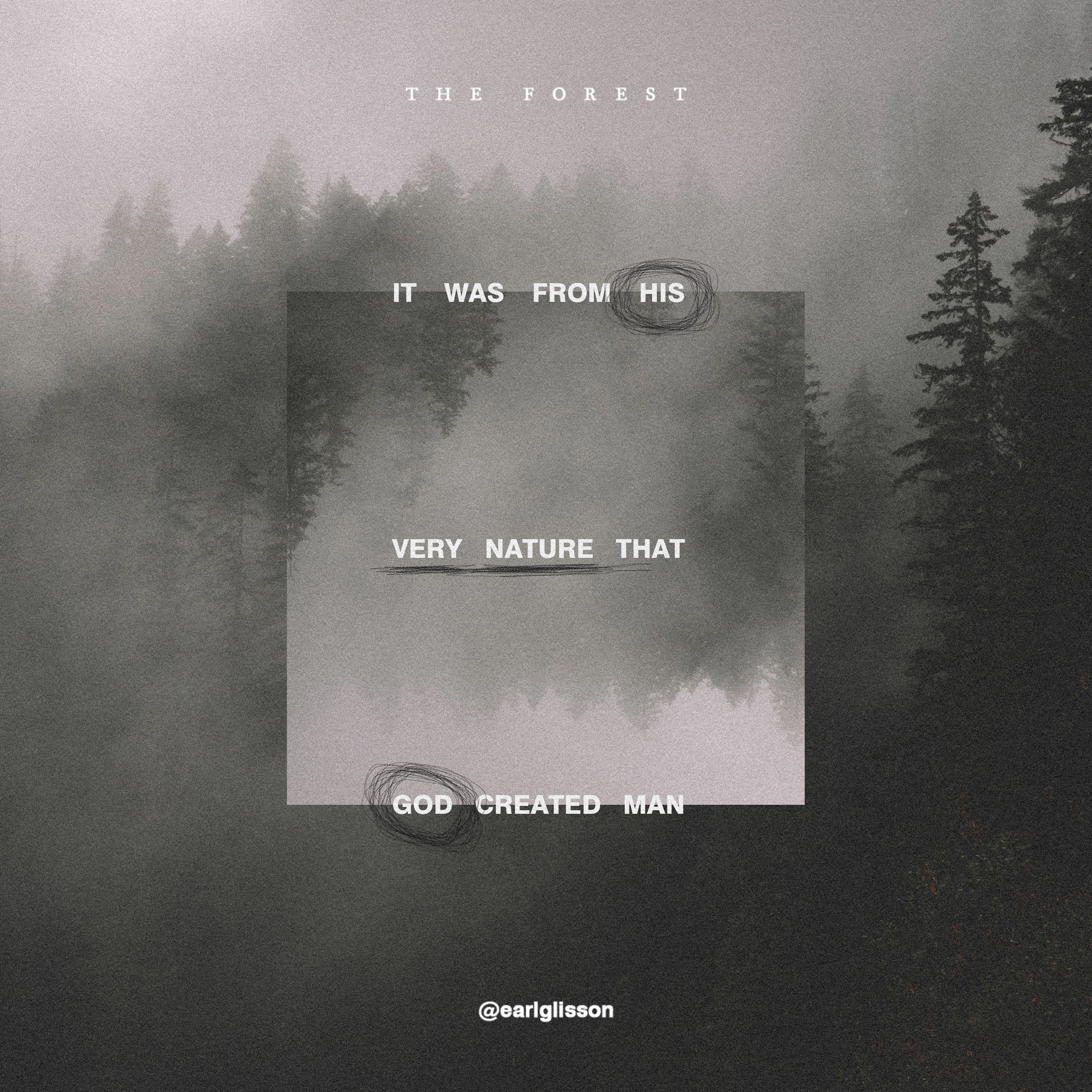 The Forest_Quote 5_Square